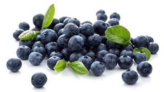 蓝莓走俏市场