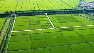 我国将新建1亿亩农田