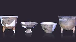 全国十大考古新发现评选