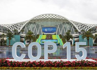 《生物多样性公约》缔约方大会第十五次会议